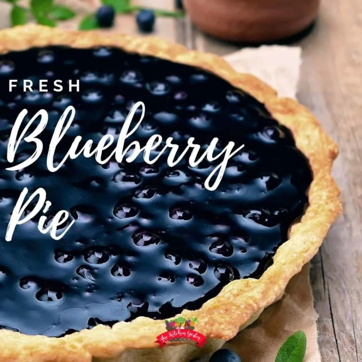 Fresh Blueberry Pie (or peach or strawberry!)