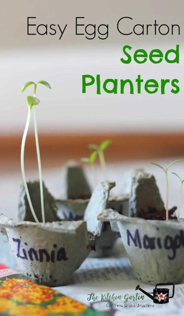 egg carton seed planters
