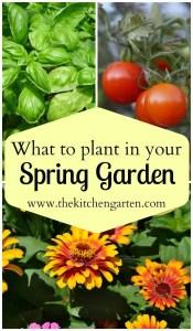 Spring Garden: What to Grow?