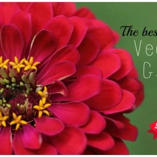 The Best Flowers for Vegetable Gardens