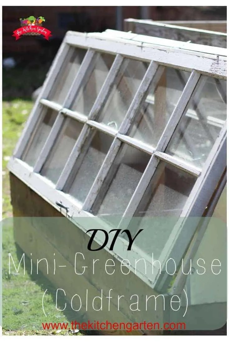 Build your own DIY Mini-Greenhouse (coldframe) with just a a few supplies and scraps.