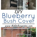 Blueberry Bush Covers