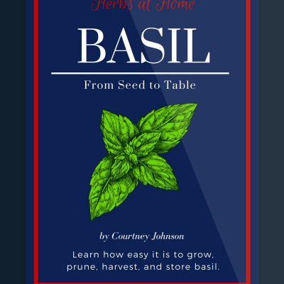 Basil: Seed to Table