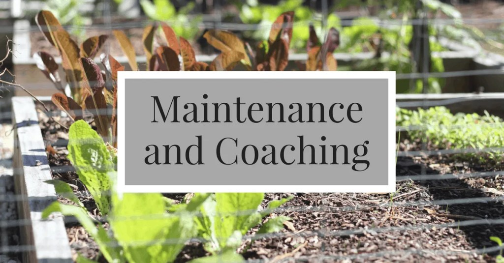 maintenance and coaching