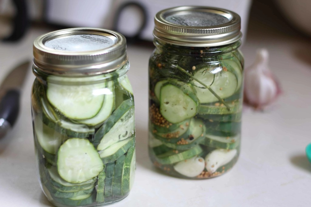 quick dill pickles