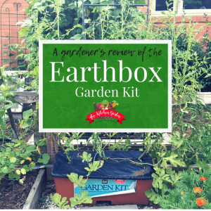 earthbox review