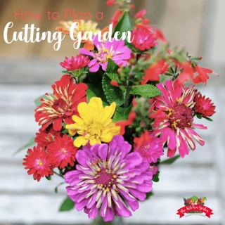 How to Plan a Gorgeous Cutting Garden
