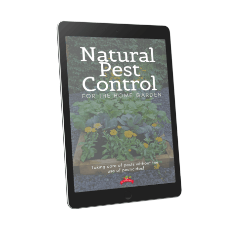 Cover of natural pest control book