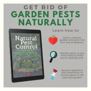 Natural Pest Control E-book