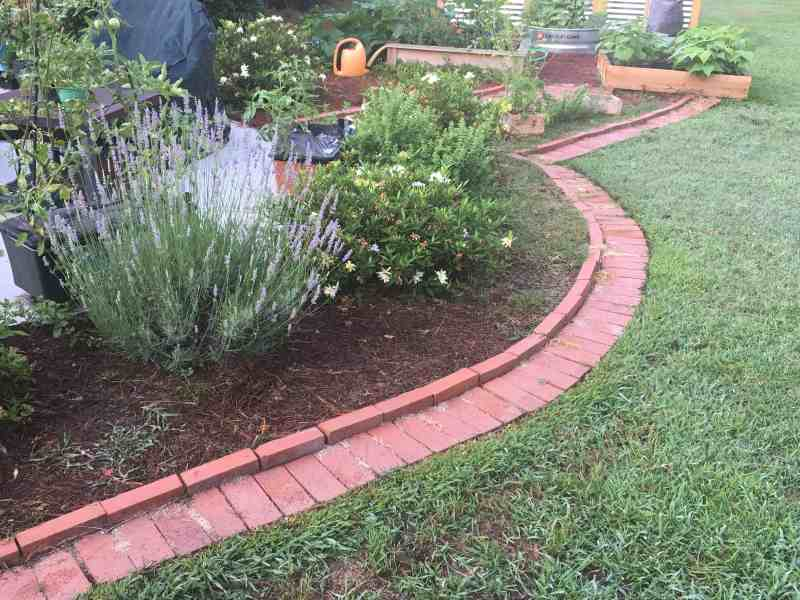 brick edging alongside a flower bed