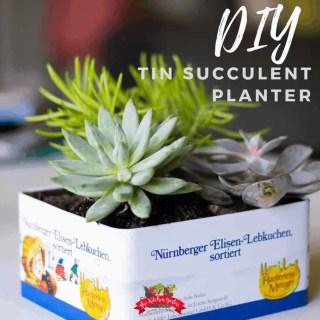 DIY Tin Succulent Planter