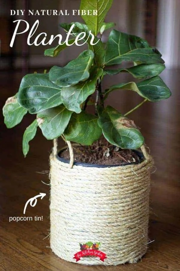 sisal wrapped popcorn tin planter