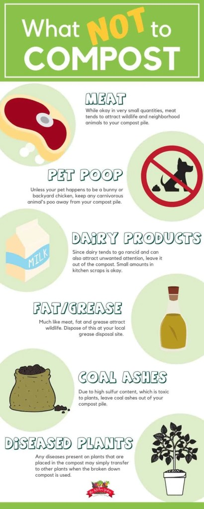 what not to compost infographic