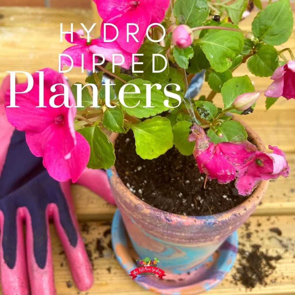 hydro dipped planters with pink flowers