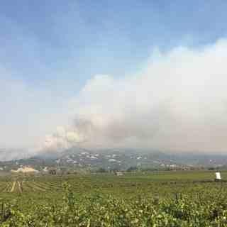 Sonoma County Firestorm Check-In