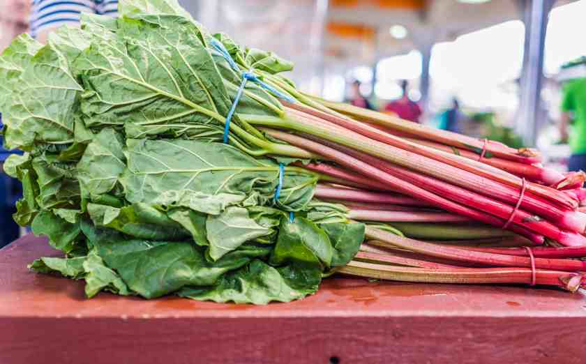 What are the most nutritious vegetables to juice - Swiss Chard