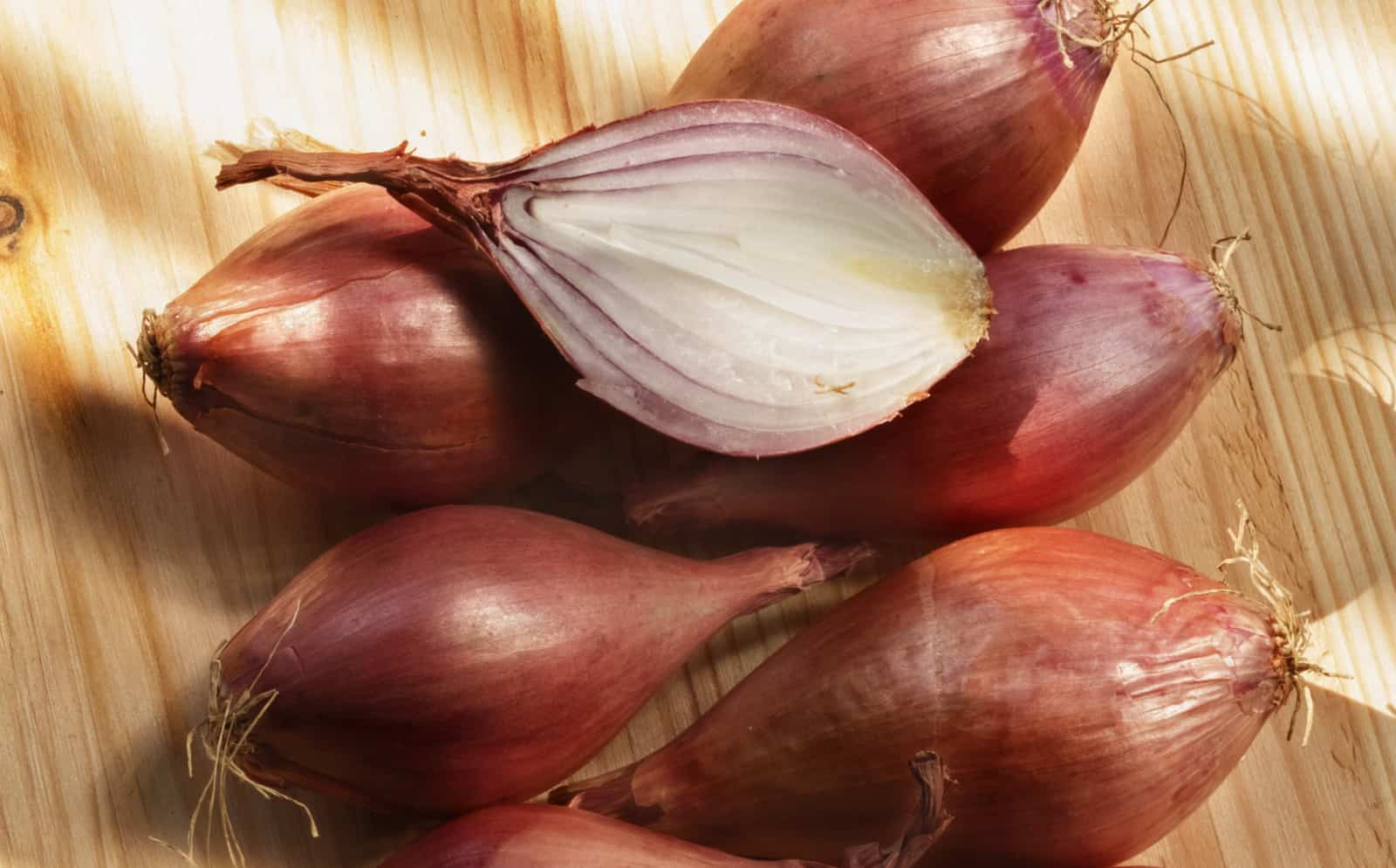 Best Substitute for Shallots