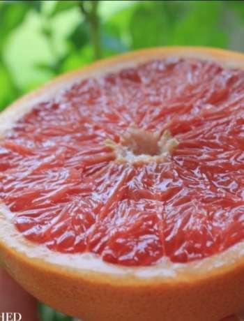 Clean Eating Breakfast Grapefruit 2