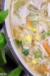 Clean Eating Chicken & Brown Rice Soup