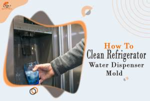 how to clean refrigerator water dispenser mold