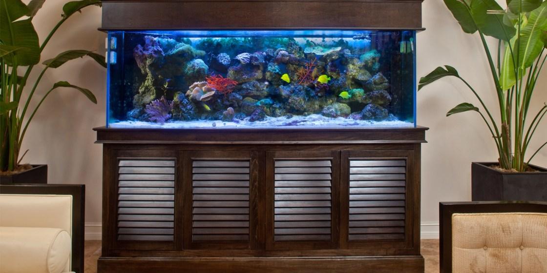 Tommy Bahama Fish Tank