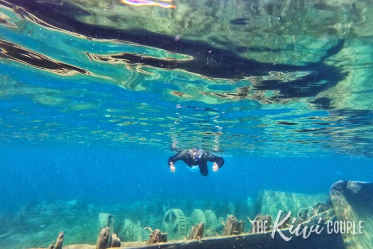 Snorkeling in Tobermory, Ontario