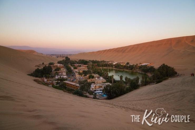A desert oasis in the sunset light.