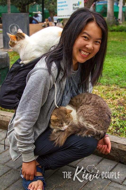 Rachel smiling with one cat sitting on her backpack and another cat sitting on her lap