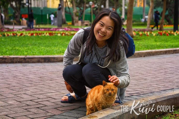 Rachel smiling while patting a little orange cat in the Lima Cat Park