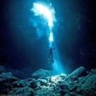 34E07E9800000578-3623466-Scuba_diving_instructor_Charlie_Jung_captured_what_lies_beneath_-a-48_1464946425790