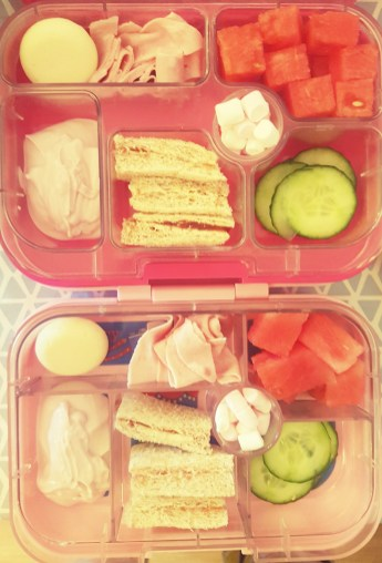 The Knight Tribe-Yumbox