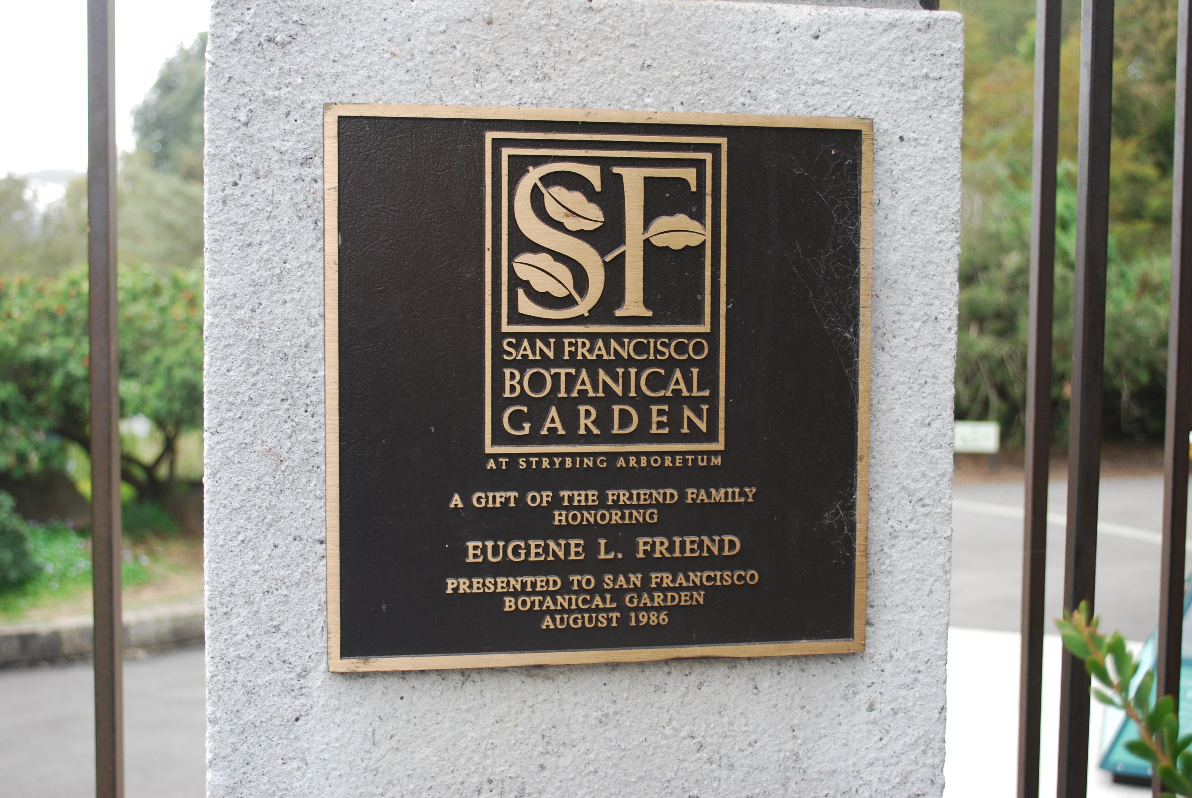 In Golden Gate park
