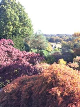 Autumn Colours at Scotney Castle