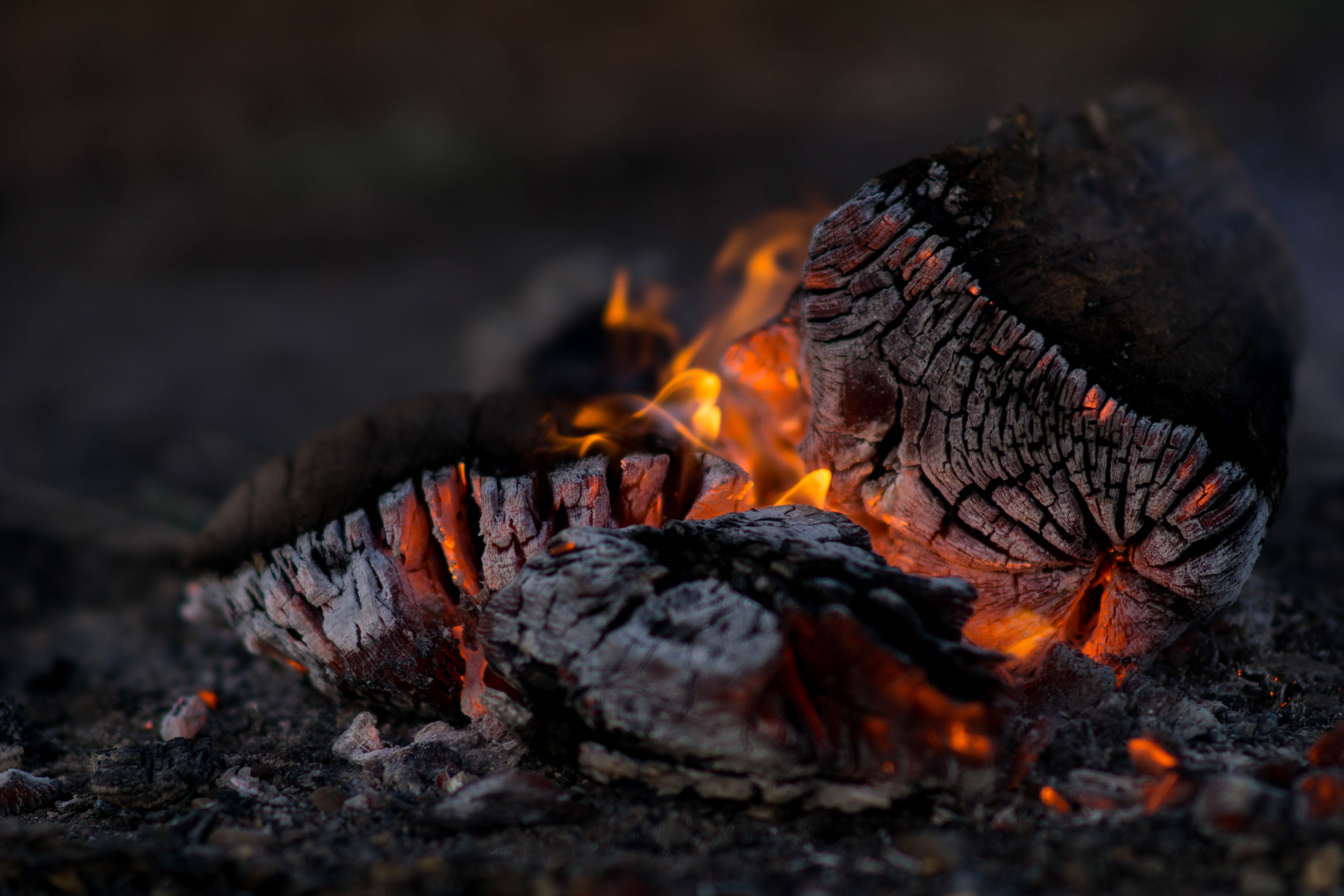 A burning log turns to charcoal.