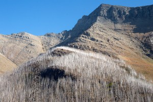Oct 2/20 – Akamina Parkway, Waterton