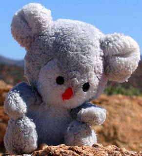 Koala Bear, the mascot of blogger Bonnie Way, hangs out in Australia