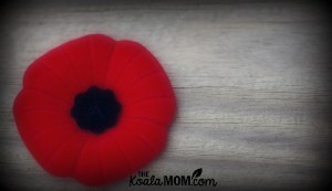 Red Poppies, Great-Uncles, and Remembrance Day