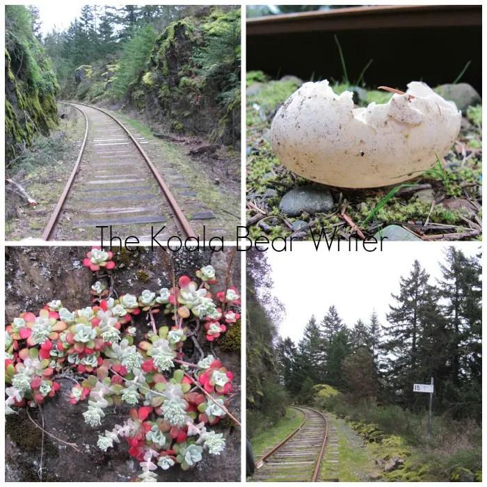 egg, flowers, train track trail