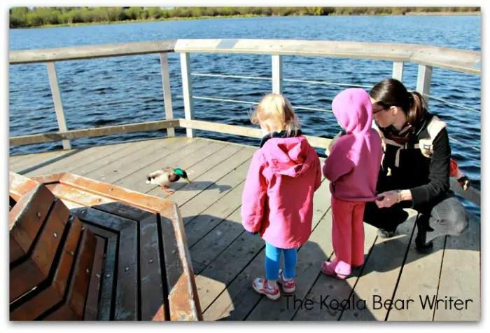 Mom and two girls feeding a Mallard Duck at Swan Lake Nature Sanctuary