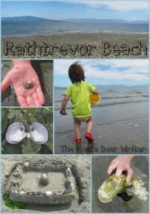 Fun at Rathtrevor Beach: Crabs, Kites and Sand Castles