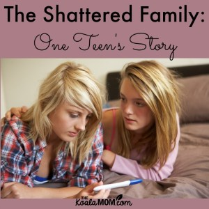 The Shattered Family (Guest Post)