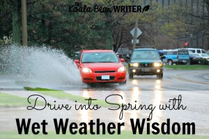 Drive into Spring with Wet Weather Driving Wisdom!
