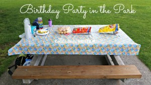 A Birthday Party in the Park