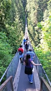 Explore Capilano Suspension Bridge Park