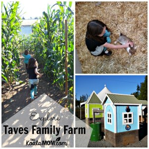 Explore Taves Family Farm