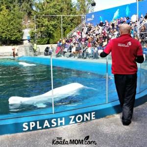 Vancouver Aquarium (Wordless Wednesday)