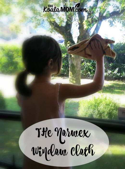 6-year-old washing a window with the Norwex window cloth