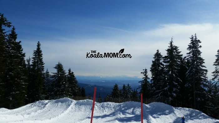 The view from the sledding area at Mount Seymour