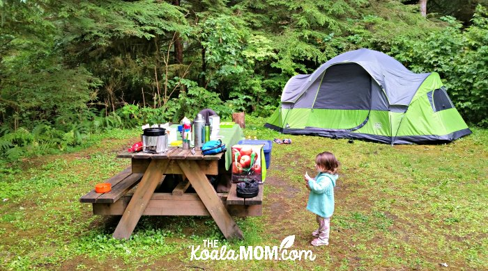 Our camping site at the Quatse River Campground in Port Hardy, BC