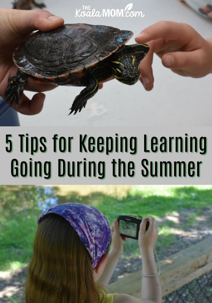 5 Tips for Keeping Learning Going During the Summer
